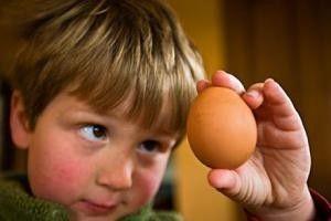 Аллергия на яйца, симптомы и лечение