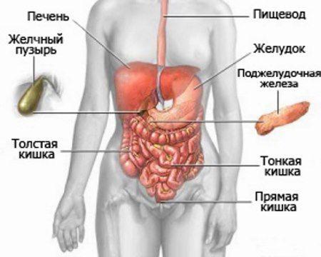 Unutrašnje organe, što uzrokuje bol u donjem desnom abdomenu