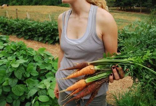 dijeta poljoprivrednik