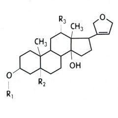 Химическая формула Дигитоксина