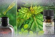 Эфирное масло пачули: применение, полезные свойства