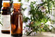 Эфирное масло розмарина: применение, свойства