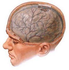 Энцефалопатия — поражение тканей головного мозга