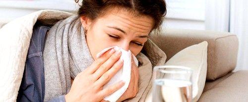 Красная щетка может применяться при простудных заболеваниях