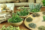 Лечение гипертонии лекарственными растениями