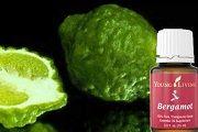 Масло бергамота: применение, свойства