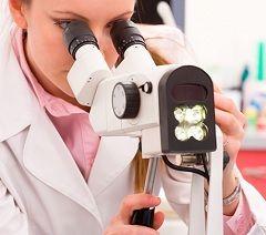 Rezultati oncocytology: varijante norme