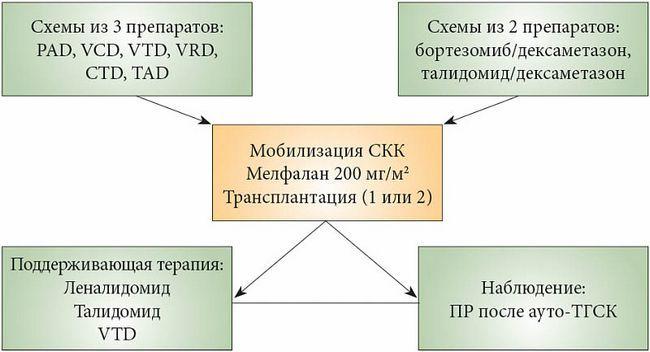 Алгоритм терапии при индукции множественной меланомы