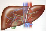 Pechenochnaya nedostatochnost - lechenie simptomyi