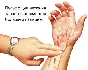 Puls (rata pulsului) uman normal