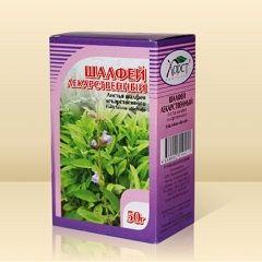 Шалфей лекарственный - многолетнее целебное растение