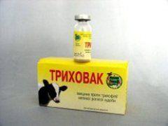 Препарат для лечения трихофитии