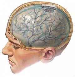 Потеря сознания - один из симптомов ушиба головного мозга