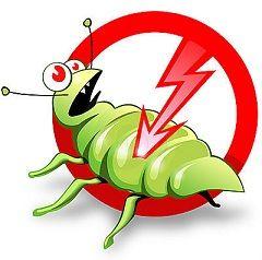 Osoba podnošenje insekata pretvoriti u opasne štetočine, i to objašnjava zašto dezinsekciju prostora