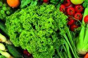 Здоровое питание: очередное разоблачение мифов