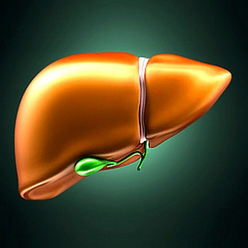 Жировой гепатоз печени: симптомы и лечение