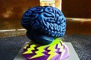 Uchastok golovnogo mozga otvechauwii za schaste