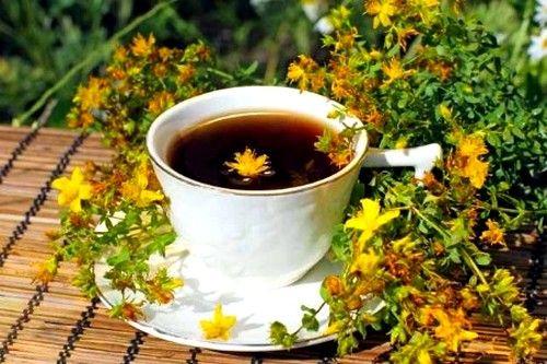 Hronična upotreba uz čaj lišća jača zidove malih krvnih sudova, poboljšava vensku cirkulaciju